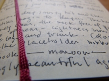 "a page from the first journal and the ""achingly beautiful"" riboon"
